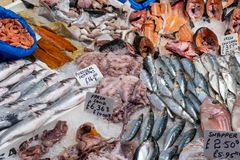 Fish and seafood for sale Royalty Free Stock Photos