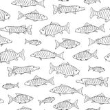 Fish seamless pattern in doodle style. Hand drawn. Vector illustration Stock Photography