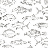 Fish Seamless Pattern. Fish collection. Dorado, Fish Eel, Tuna, Salmon, Halibut, Herring, Sea bass, Cod, Sturgeon. Vector illustration for design menus Stock Photography
