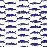 Fish seamless pattern. royalty free illustration
