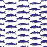 Fish seamless pattern. Hand drawn fish seamless pattern Royalty Free Stock Image