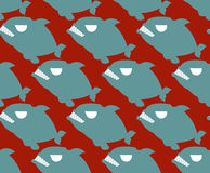 Fish seamless pattern. Naval Piranha predatory fish  backg Stock Image