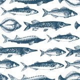 Fish vector seamless pattern for restaurants, emblem, vector image. Retro illustration. Fish seamless vector pattern. Can be use for restaurants, packaging Royalty Free Stock Photos