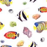 Fish and seashell. Repeating seamless pattern. Watercolor Stock Photo