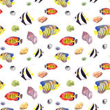 Fish and seashell. Repeating seamless pattern. Watercolor Royalty Free Stock Photography