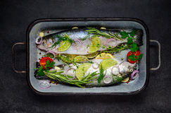 Fish Seasoned with Spices and Herbs Stock Photography