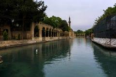 Fish See, Urfa, die Türkei stockfoto