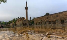 Fish See, Urfa, die Türkei lizenzfreie stockbilder