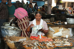 Fish seller Stock Images