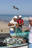 Fish seller in Barka, Oman Stock Photo
