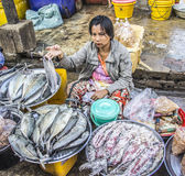 Fish seller Stock Photography