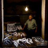 Fish seller in Medina of Fez, Morocco Royalty Free Stock Image