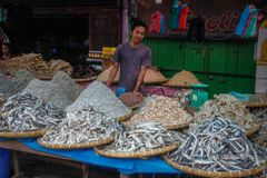 Fish sellers in the local Indonesian authentic and colorful street market royalty free stock photos