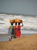 Fish sellers, Puri, Orissa, India. Three fish sellers, walking along the shoreline with large baskets on top of their heads, Puri, Orissa, India royalty free stock photography
