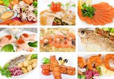 Fish set. Set of different tasty fish dish Royalty Free Stock Photo