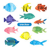 Fish set. Collection of colorful watercolor sea fish Stock Image