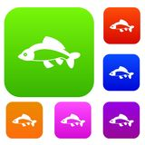 Fish set collection. Fish set icon in different colors isolated vector illustration. Premium collection Royalty Free Stock Photography