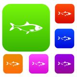 Fish set collection. Fish set icon in different colors isolated vector illustration. Premium collection Stock Photo