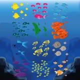 Fish set Royalty Free Stock Photo