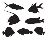 Fish Set Silhouettes Stock Photography