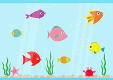 Fish set swimming at aquarium. Star, crab, seaweed, stones, bubbles, water waves.  Royalty Free Stock Photography