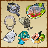 Fish set, traps, jaw and other image of piranha Royalty Free Stock Photography