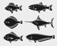 Fish set. Vector. Fishing animal Stock Photos