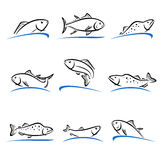 Fish set. Vector. Illustration food market business herring sea banner Stock Image