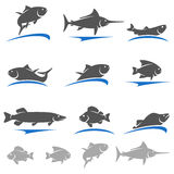 Fish set. Vector. Illustration  fresh food market Royalty Free Stock Photography