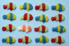 Fish-shaped gummy candies. Some fish-shaped gummy candies put in line on a blue background and a different one between them Royalty Free Stock Image