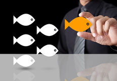 Fish showing leader individuality success. Goldfish showing leader individuality success concept Stock Photos