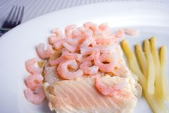 Fish and shrimps Royalty Free Stock Image