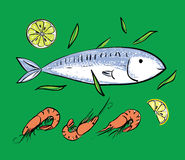 Fish and shrimps on green backgruond. Seafood set. Fish and shrimps on green backgruond vector illustration