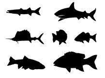 Fish silhouette Stock Image