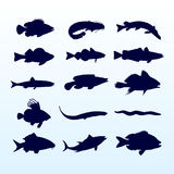 Fish silhouettes. 15 different types of fish silhouettes stock illustration