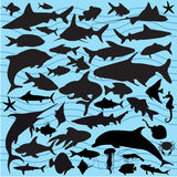 Fish Silhouettes. A collection of fish and sea life silhouettes Royalty Free Stock Photography