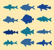 Fish silhouettes Stock Image