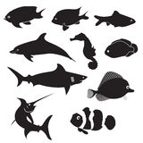 Fish Silhouettes Stock Photos