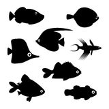 Fish silhouettes. Vector illustration. Fish silhouettes on white background. Vector illustration Royalty Free Stock Photography