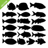 Fish silhouettes vector Royalty Free Stock Photography