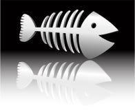 Fish skeleton Stock Photos