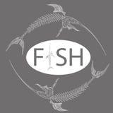 Fish skeleton Stock Images