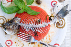 Fish skeleton on dish. Fun. Royalty Free Stock Images