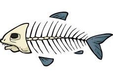 Fish skeleton doodle Stock Image