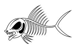 Fish skeleton Stock Photos