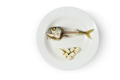 Fish skeleton and modicum foods on plate Royalty Free Stock Photo