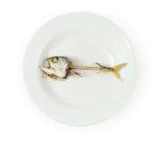 Fish skeleton on plate Stock Photos