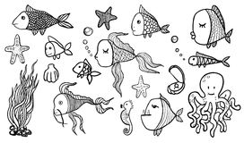 Fish Sketches Stock Photos