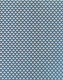 Fish skin pattern with glitter for backgrounds or wallpapers or packaging use.  Royalty Free Stock Images