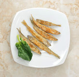 Fish smelt  fried in a plate Royalty Free Stock Photo
